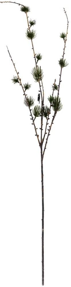 På billedet ser du variationen Gren, Larch fra brandet House Doctor i en størrelse H: 97 cm. B: 15 cm. i farven Natur