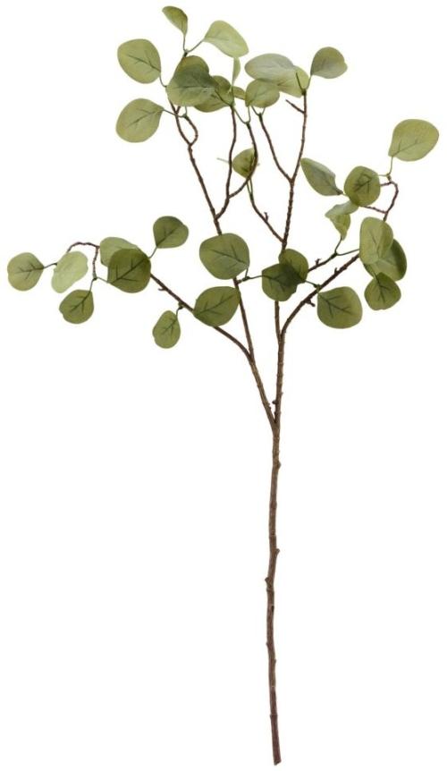På billedet ser du variationen Gren, Eucalyptus fra brandet House Doctor i en størrelse H: 80 cm. B: 30 cm. i farven Natur